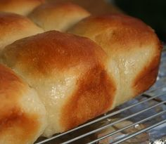 Pani Popo (Samoan Coconut Buns) Recipe