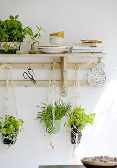 potager intérieur DIY
