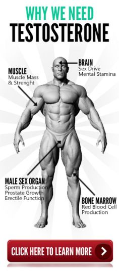 why we need testosterone