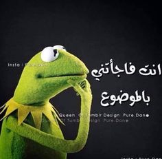 Funny Photo Memes, Funny Picture Jokes, Funny Reaction Pictures, Cute Memes, Funny Photos, Arabic Memes, Arabic Funny, Funny Arabic Quotes, Funny Cartoon Quotes