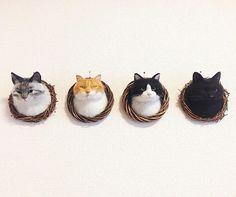 """727 次赞、 22 条评论 - mako (@mosscat25) 在 Instagram 发布:""""ずらっとのぞき見猫達 - - - - - - - 歴代実家猫の柄で制作しました。 1.2.3代目・茶白猫 4.5代目・サバトラ猫 6代目・はちわれ猫 7代目・黒猫…"""""""