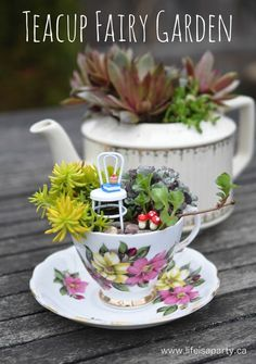 DIY Teacup Fairy Mini Garden