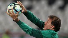 Embalado, Cuca vê triunfo palmeirense merecido sobre o Botafogo