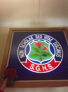 This is the school logo if you try hard at school you will get a good job and that is good for your well-being