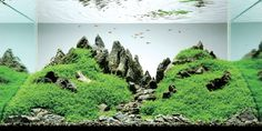 photo Majed-Khalil-A-fish-tank-by-Amano_zps92a77156.jpg