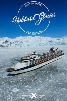 Things to Expect on a Cruise to Hubbard Glacier in Alaska Glacier Bay National Park, National Parks, Hubbard Glacier, Cruise Destinations, Celebrity Cruises, Alaska Cruise, Bald Eagle, Mother Nature, Wilderness