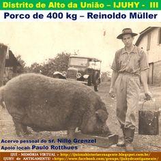 IJUÍ - RS - Memória Virtual: Porco de 400 kg do sr. Reinoldo Müller, agricultor...