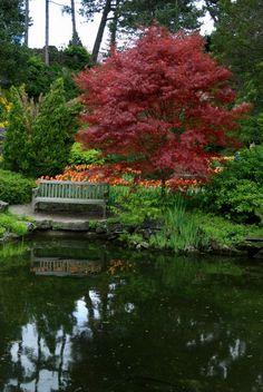 Royal Botanical Gardens, a real treasure in Hamilton.
