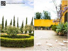 Quinta de Sant'Ana – wine estate wedding venue in Mafra, Portugal. Wedding Abroad, Rustic Wedding Venues, Destination Wedding Photographer, Portrait Photographers, Portugal, Light Wedding, Wedding Photography, Nature, Plants
