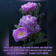 "If you use your tool on it ""And if you make Me an altar of stone, you shall not build it of hewn stone; for if you use your tool on it, you have profaned it."" Exodus 20:25 (NKJV) God's altar was to be built of unhewn stones, that no trace of human skill or labour might be seen upon it. Human wisdom delights to trim and arrange the doctrines of the cross into a system more artificial and more congenial with the depraved tastes of fallen nature; instead, however, of improving the gospel carnal…"
