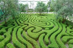 background maze! love this!