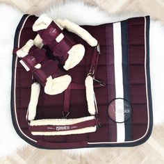 rugs, halter, protecs official competitions horses and … – … tapis, licol, protecs concours officiels chevaux e… – - Art Of Equitation Equestrian Boots, Equestrian Outfits, Equestrian Style, Equestrian Problems, Riding Hats, Horse Riding, Riding Gear, Eskadron Platinum, Horse Tips