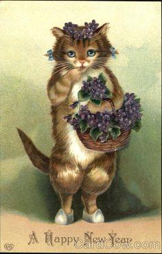 Vintage postcard - Cat with violets