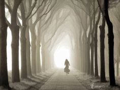 Gone in a few sec, painted version, Holland, The Netherlands by Lars van de Goor on 500px