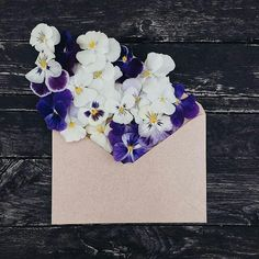 Picture of pansies spilling out of an envelope on a dark background.