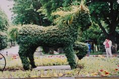 styroform in horse's belly then the wire is stuffed with florist moss and dirt then ivy plants; the mane is stella d'ora daylilies