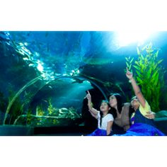 Value Package Bike Tour Crystal Grill Restaurant and Siam Ocean World