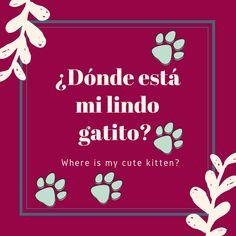 Bint tu gatito Spanish English, English Class, Teaching English, Learn English, Spanish Phrases, Spanish Vocabulary, English Phrases, Spanish Basics, Spanish Lessons