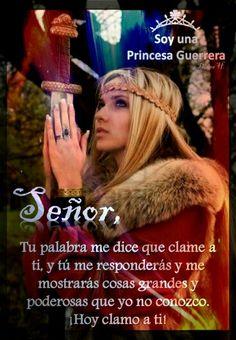 Princesa guerrera