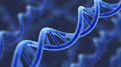 Компьютерная томография способствует разрушению ДНК людей http://healthvesti.com/body-mind/201534919/kompyuternaya-tomografiya-sposobstvuet-razrusheniyu-dnk-lyudej.html