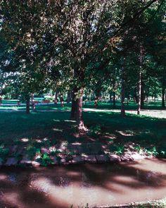 #park #freetime #walk #shotononeplus #lightroom