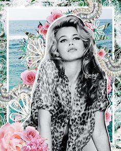 collage2white.jpg