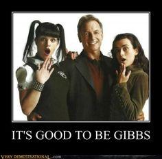 It's good to be Gibbs.