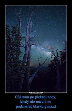 Cóż nam po pięknej nocy, kiedy nie ma z kim podziwiać blasku gwiazd –