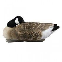 Canada Goose kensington parka replica authentic - 1000+ images about Goose Decoys on Pinterest | Snow Goose, Full ...