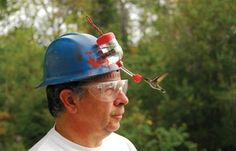 Hummingbird hat!...I want one of these...:)