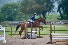 Rob tells this rider she is behind her horse's motion... But it's not her fault! See why by clicking the link!