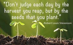 """Don't judge each day by the harvest you reap, but by the seeds that you plant.""  R L Stevenson"