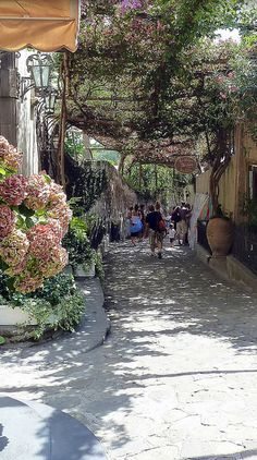 per le strade di Positano  walked this numerous times - so beautiful when the flowers are blooming!