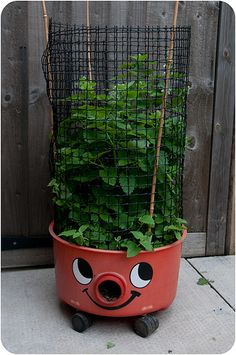 sweet! planter out of an old Henry vacuum cleaner