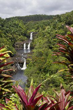 Hawaii Big Island: Umauma Falls - north of Hilo Hawaii Honeymoon, Hawaii Vacation, Dream Vacations, Vacation Spots, Honeymoon Destinations, Kauai, Honolulu Oahu, Beautiful Islands, Beautiful Places