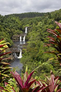 Umauma Falls - north of Hilo, on the Big Island of Hawaii