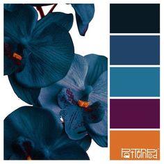 Color palette paint inspiration paint colors paint palette color design ins Scheme Color, Color Schemes Colour Palettes, Colour Pallette, Color Palate, Color Combos, Best Color Combinations, Rust Color Schemes, Burgundy Colour Palette, Purple Paint Colors
