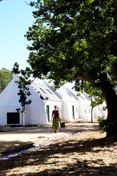 Beautiful Farm Restaurant in South Africa Farm Date, Farm Restaurant, Cape Dutch, Le Cap, Beautiful Farm, Beautiful Places, Farm Cottage, Green Valley, Great Hotel