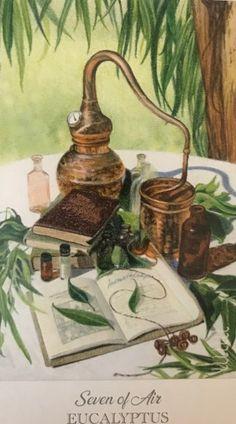 Card of the Day – 7 of Swords (Air) (Eucalyptus) – Sunday, February 14, 2021 – Tarot by Cecelia Tarot Card Decks, Tarot Cards, Tarot By Cecelia, Spirit Magic, Free Tarot, Spiritual Guidance, Archetypes, Deck Of Cards, Herbalism