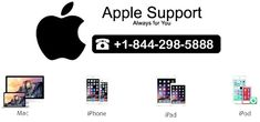 Apple tech support phone number help you to keep safe your devices and tell gives you information about unauthentic programs by apple technical support phone number Led Apple, Apple Support, Tech Support, First Step, Iphone, Number, Top, Crop Shirt, Shirts