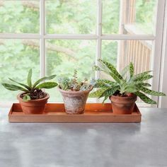 Benjara 29 in. Copper Large Rectangular Metal Window Decorative Plant Tray with Trim Edges BM195220 - The Home Depot Window Sill Decor, Window Ledge, Plants On Window Sill, Window Ideas, Bay Window, Deck Posts, Balustrades, Copper Tray, Wooden Console Table