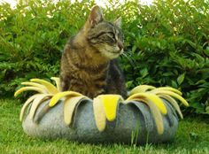 Cat bed/cat house/cat cave/grey yellow sunflower felted by elevele, $77.00