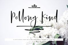 Pellony Kind (Font) by FadeLine · Creative Fabrica Handwritten Fonts, Script Fonts, New Fonts, Handwriting Styles, Calligraphy Handwriting, Wedding Calligraphy, Texture Web, Design Typography, Beautiful Calligraphy