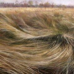 Sea of Grasses