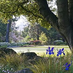 Escaping away on a tour of Sunset Magazine's incredibly beautiful gardens in Menlo Park is the perfect weekday activity!!