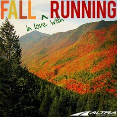 Runner Things #1626: Fall in love with running.