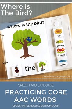 Where is the Bird? AAC Core Vocabulary Interactive Speech Therapy Book — Speech and Language at Home