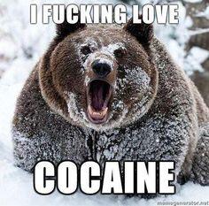 I'd hate to meet this bear Meme | Slapcaption.com