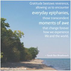 Today's Gratitude List + June 2015 Gratitude Linkup - blog post by Laurel Regan at Alphabet Salad.