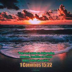 "- 1 Corintios 15:22 - ""Pues así como en Adán todos mueren, también en Cristo todos volverán a vivir."""